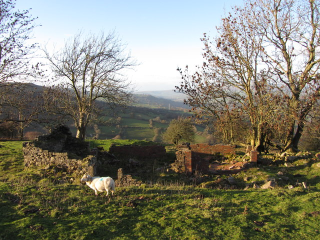 Building remains near Garn Ddyrys