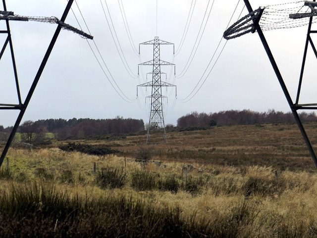 Electricity pylons near Stagshawbank Burn