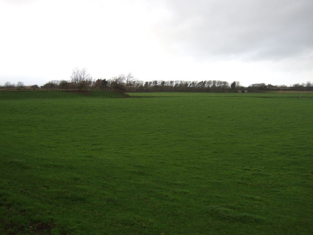 Farmland off Flat Lane