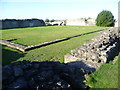 TQ4778 : The cloisters at Lesnes Abbey by Ian Yarham