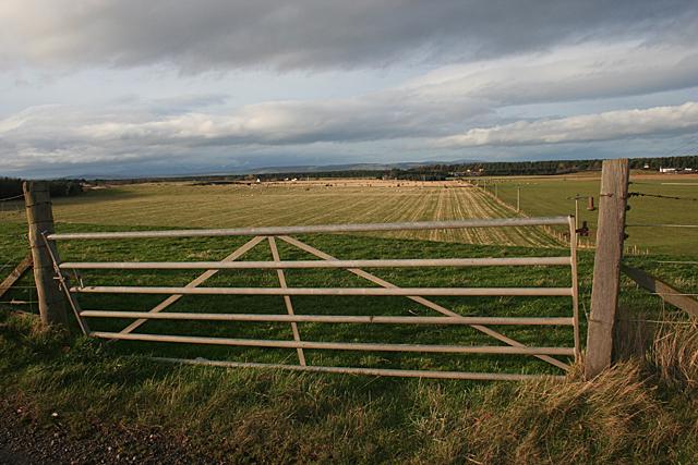 Gate at Kildrummie