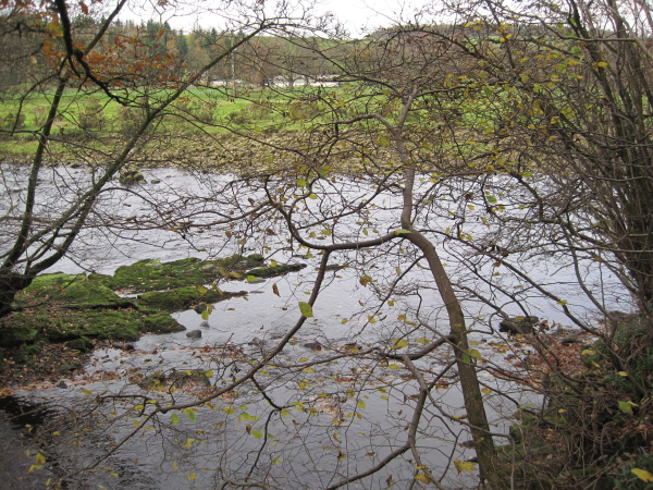 Park Burn meets the River South Tyne