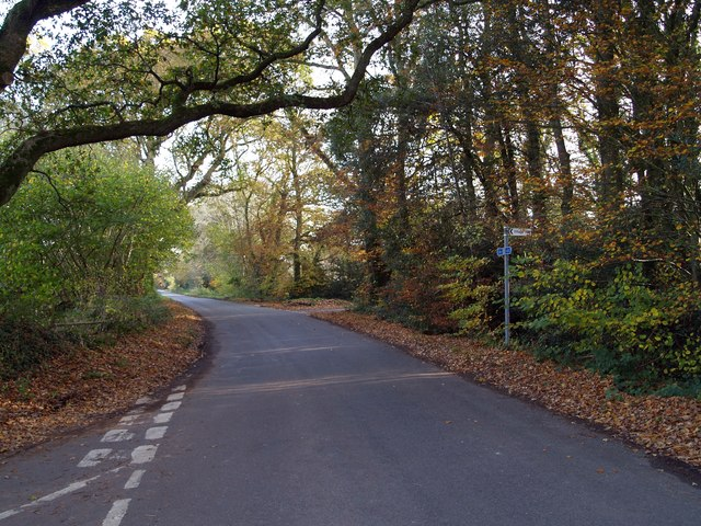 The road to Moreton