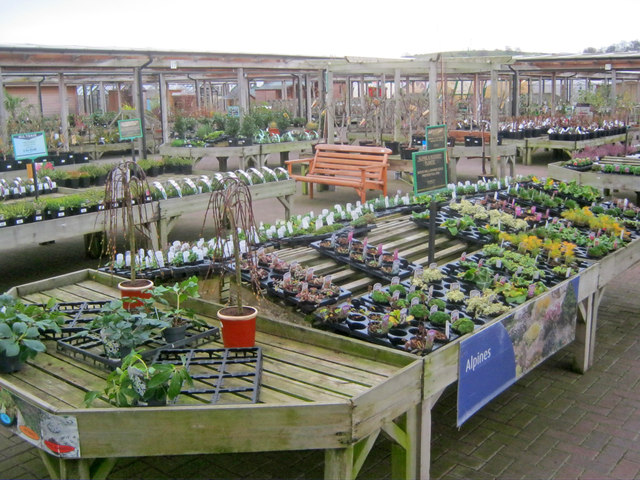 Image Result For How To Start A Retail Garden Center
