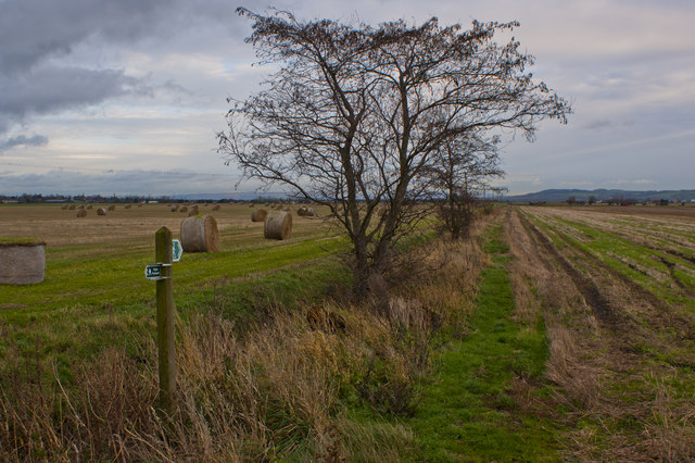 A footpath off Curlew Lane