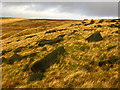 SE0031 : Boulder-strewn moorland above the A6033 by John Darch