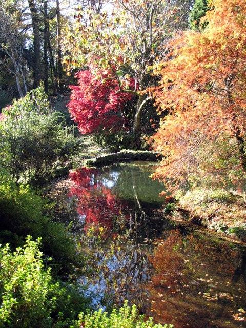Lukesland Gardens, Ivybridge