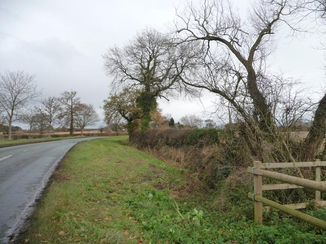 Wide verges on Middlewich Road