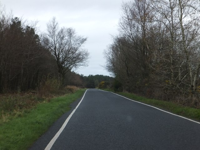 Road on Farway Hill