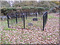 TM2345 : Dobbs Grave in Kesgrave Wood by Adrian Cable