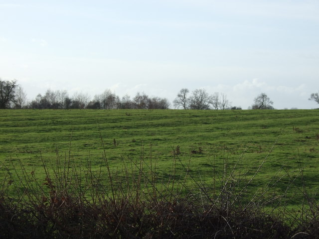 Farmland, Skip Bridge Farm
