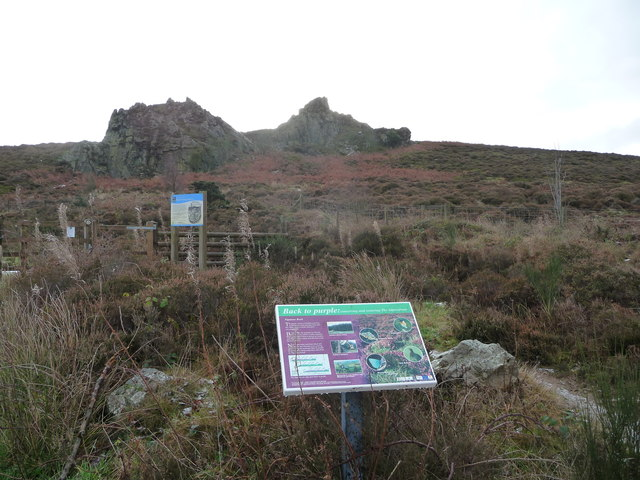 Information board below Nipstone Rock, Stiperstones