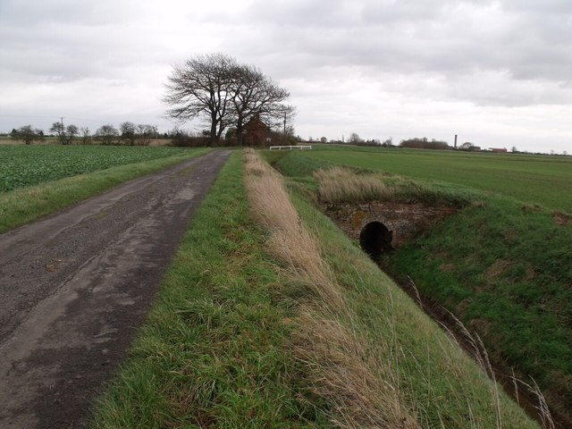 Bridge over drain off Fen Lane