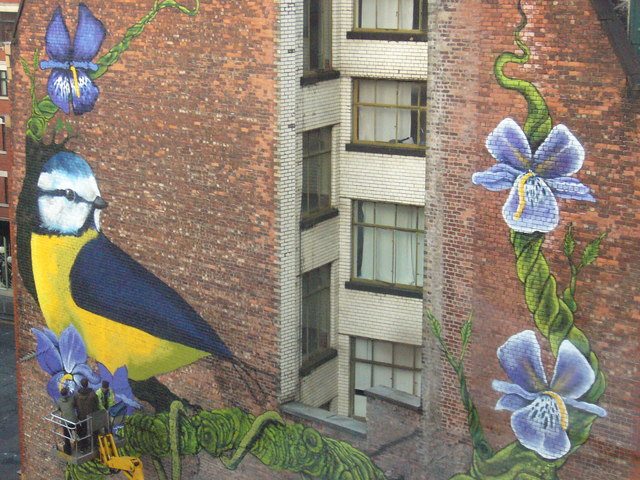 graffiti/wall mural of a bird and vining flowers taking over the side of a brick building