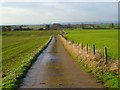 NZ3000 : Road and farmland, South Cowton by Andrew Smith