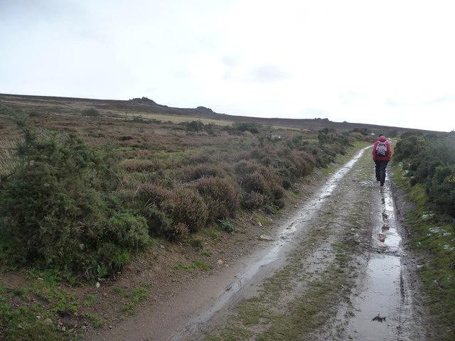 Path below the Stiperstones ridge and tors