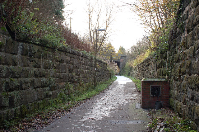 Old railway cutting in Loanhead