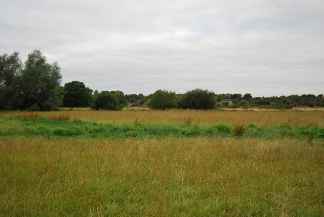 Floodplain of the River Medway