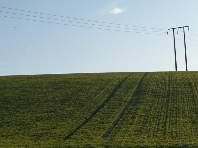 Power lines crossing the hillside