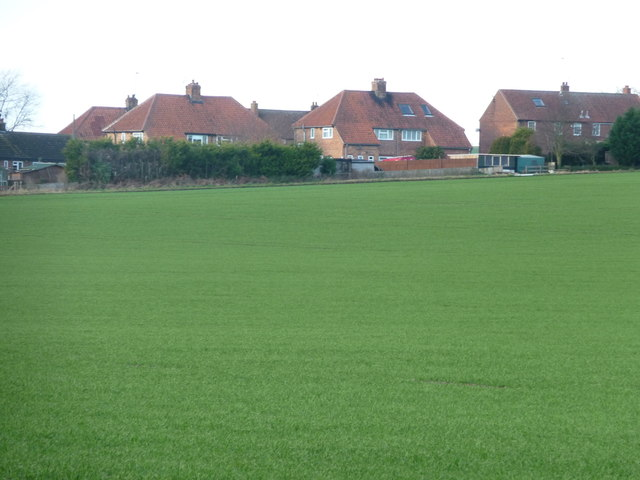 Houses at Eastfield, Foxholes