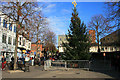 SK5236 : The christmas tree goes up in Beeston by David Lally