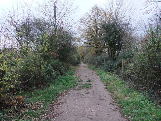 Path in Paxton Pits Nature Reserve