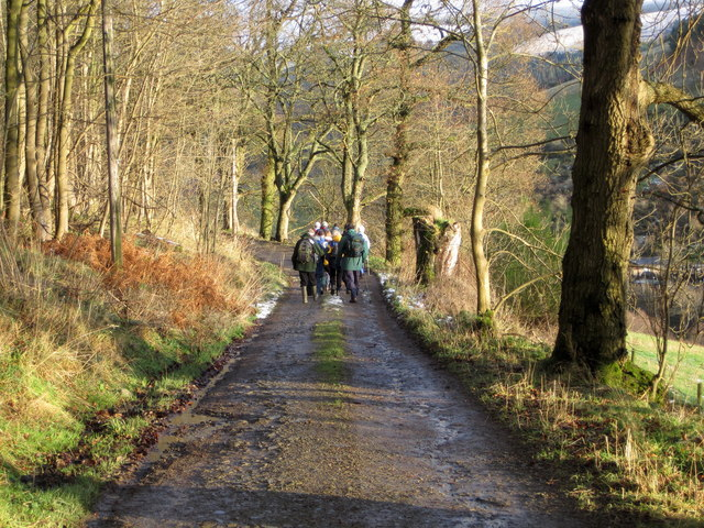 On the track to Glenbield, Peebles