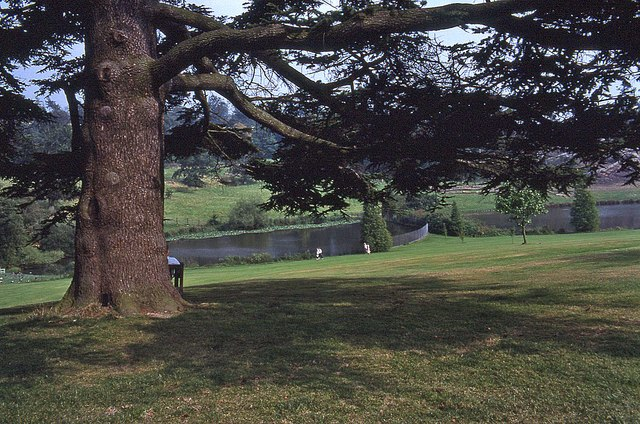 Grounds of Chartwell (1)