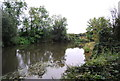 TQ6247 : River Medway by N Chadwick