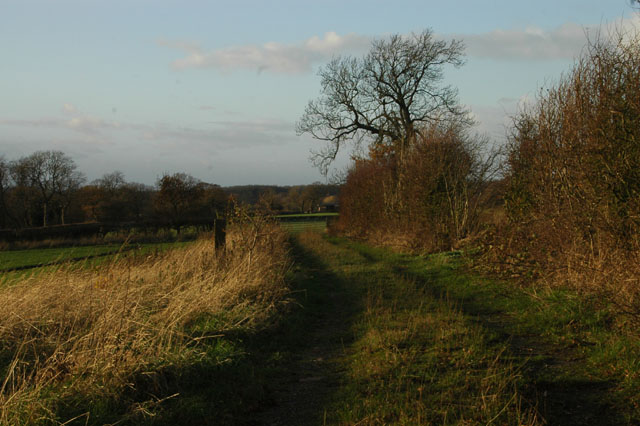 Bridleway to Lower Alstone