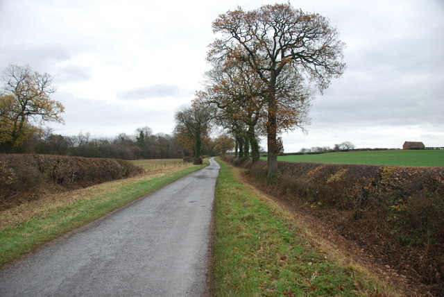 A Country lane with very neat hedges