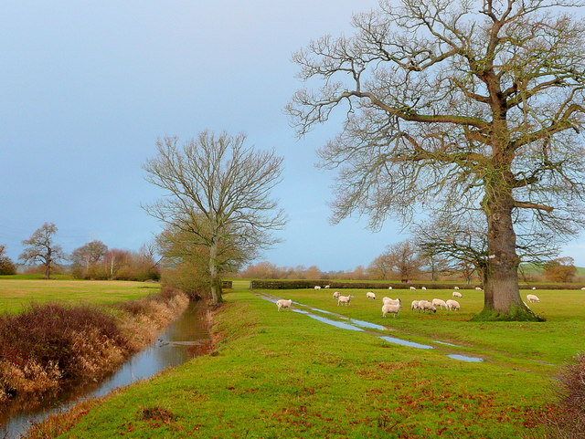 The Severn floodplain in December 2