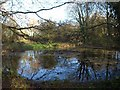 TQ3758 : Pond, Chelsham Common by Derek Harper