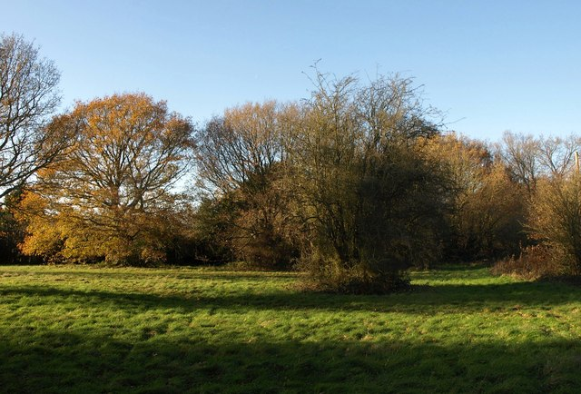Chelsham Common