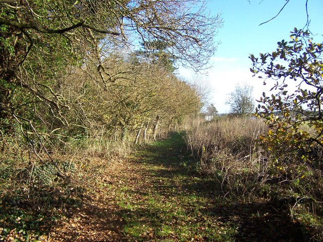 Footpath Near Shenstone Court