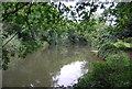 TQ6447 : River Medway by N Chadwick