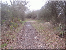 TQ2197 : Junction of Arkley Lane and path to Saffron Green by David Howard