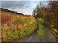 SD9604 : Stone Breaks Road by David Dixon