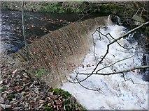 SE0023 : Weir downstream of New Bridge, Cragg Vale by Humphrey Bolton