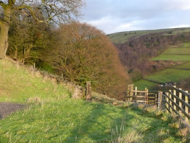 Gates at Lower Lumb Lodge
