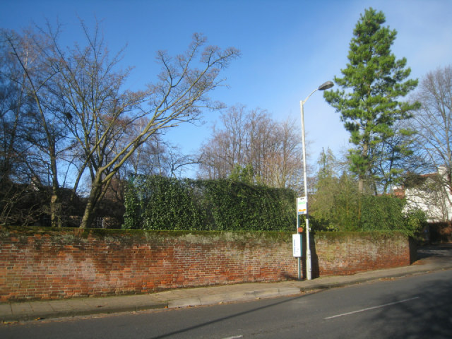 Bus stop on St Cross Road (B3335)