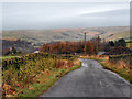 SD9805 : Burnedge Lane by David Dixon