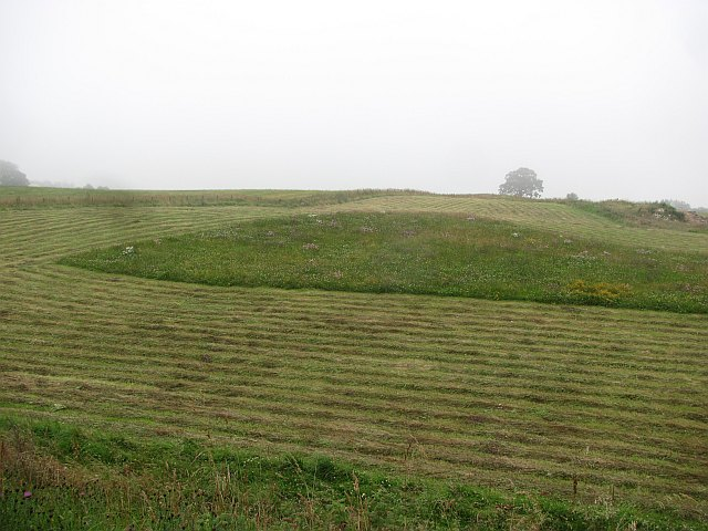 Hay meadow, Kinmundy