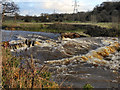 SJ9489 : Chadkirk Weir by David Dixon