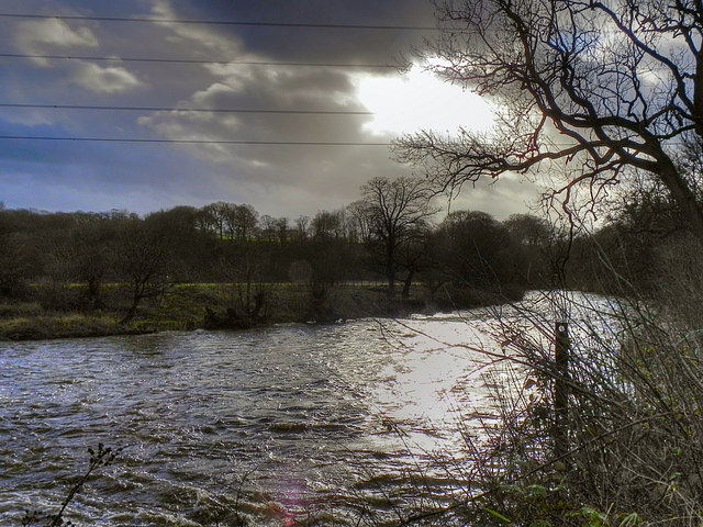 River Goyt, Downstream from Chadkirk Weir