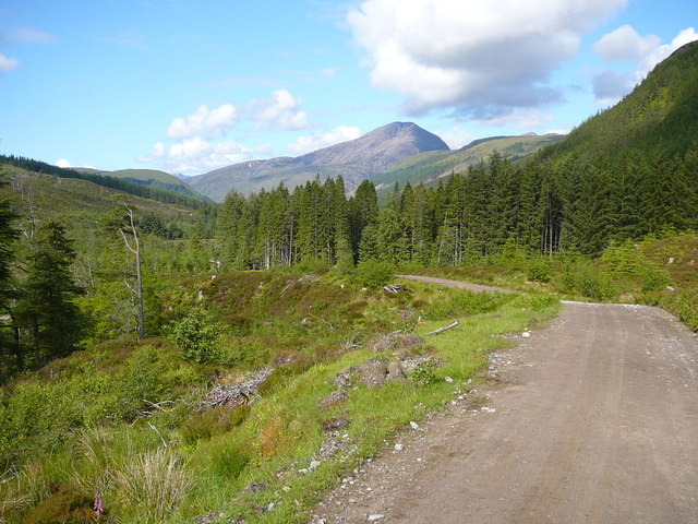 Forestry track below Meall an Fhliuchaird