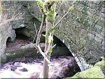 SE0023 : Upstream arch of Paper Mill Bridge by Humphrey Bolton