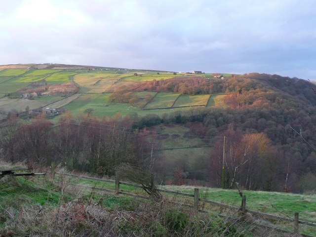 View of the western hillside from New Lane