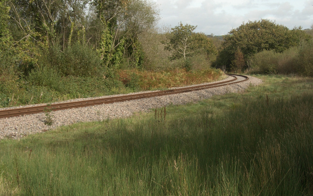 Railway line at the northern edge of Kenfig Hill (2)