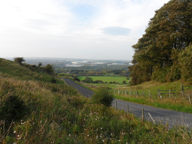 Road to Cox Green